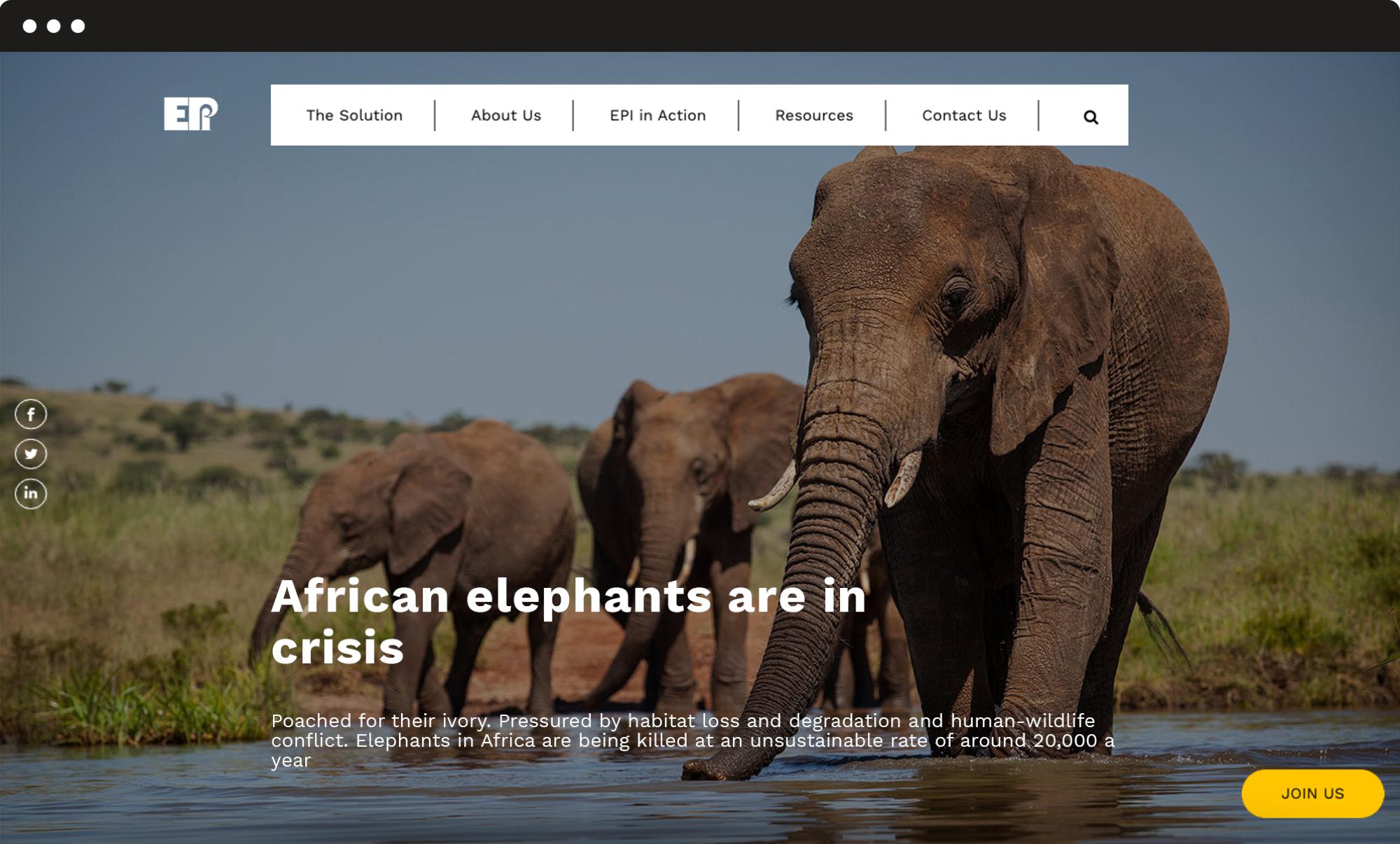 image of EPI website
