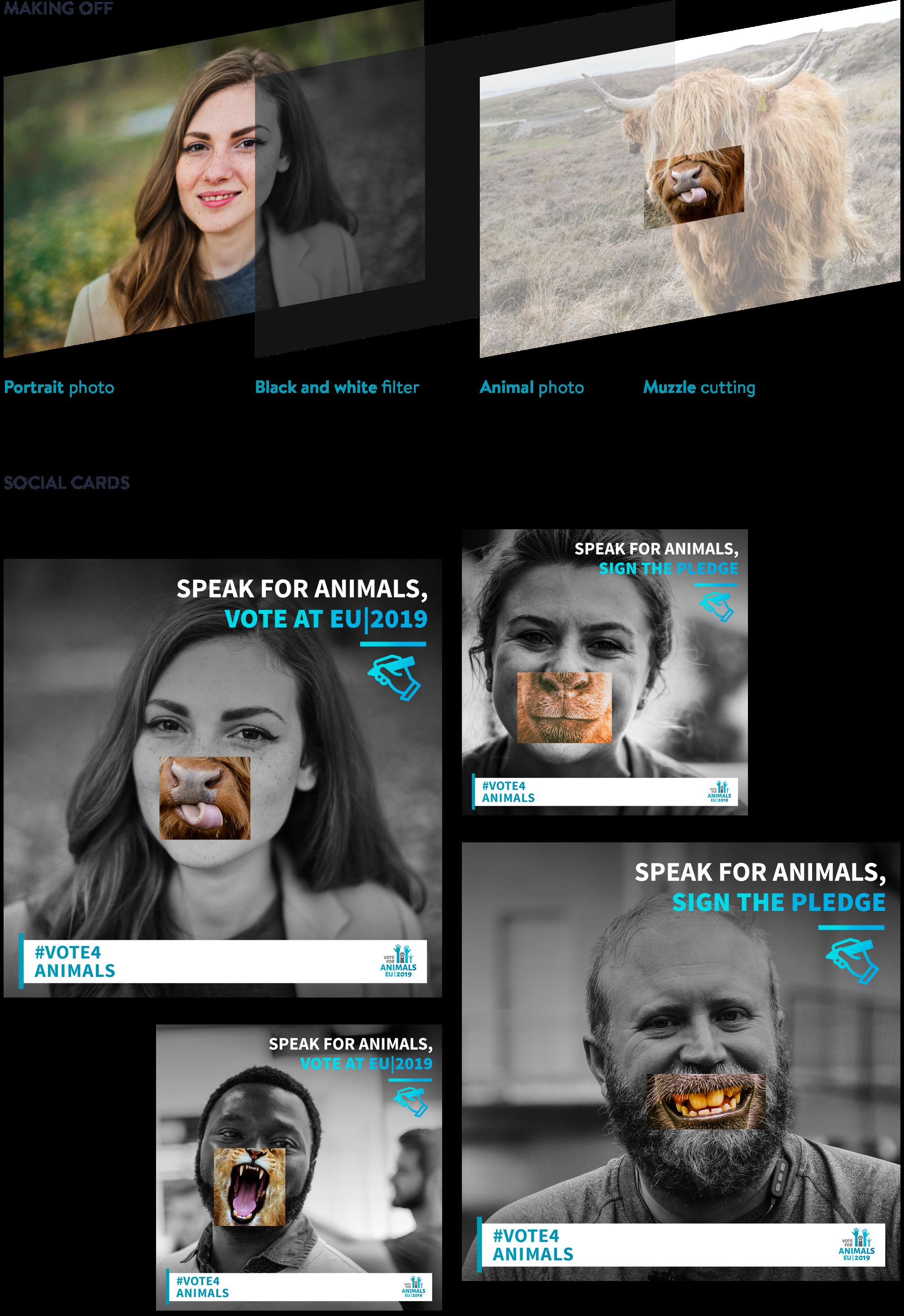making of Social Media Cards for Speak for animals