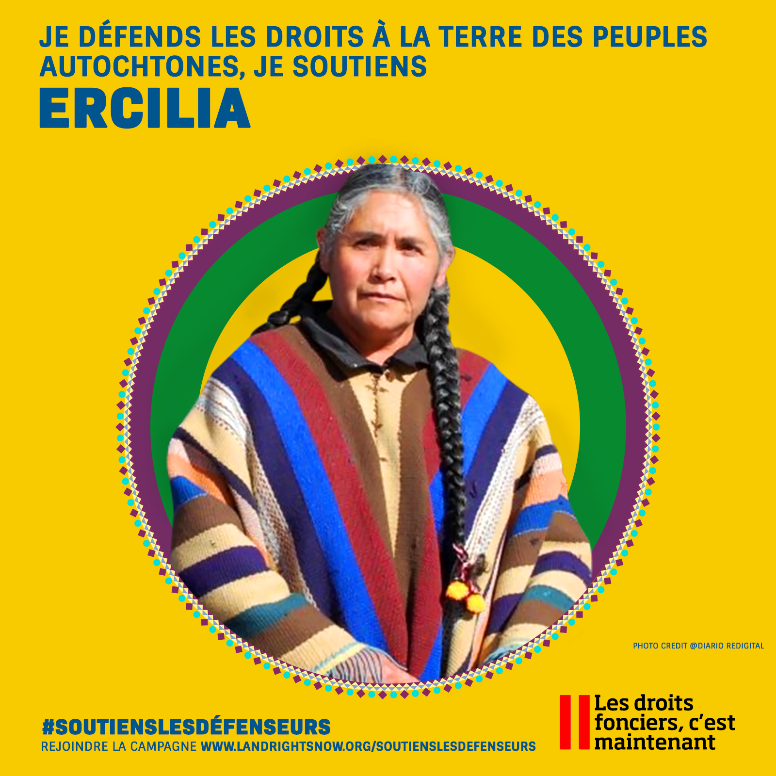 image of ercilia social card of the project with the hashtag