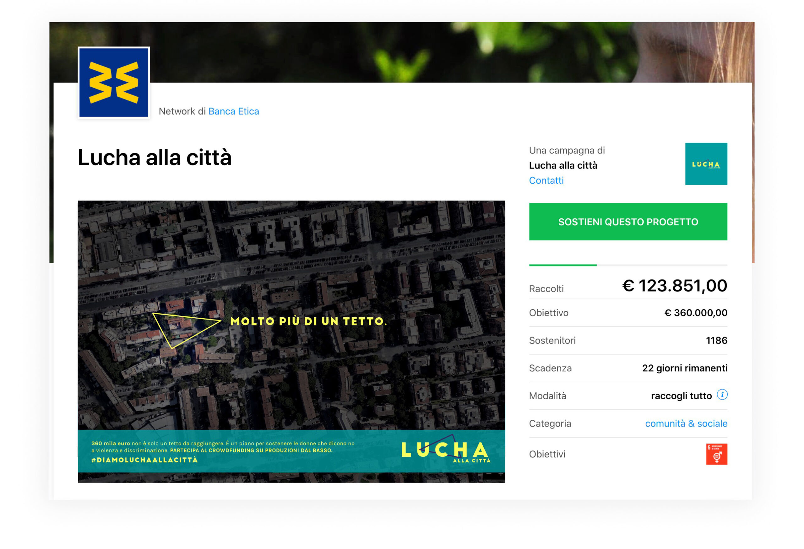 crowdfunding page lucha