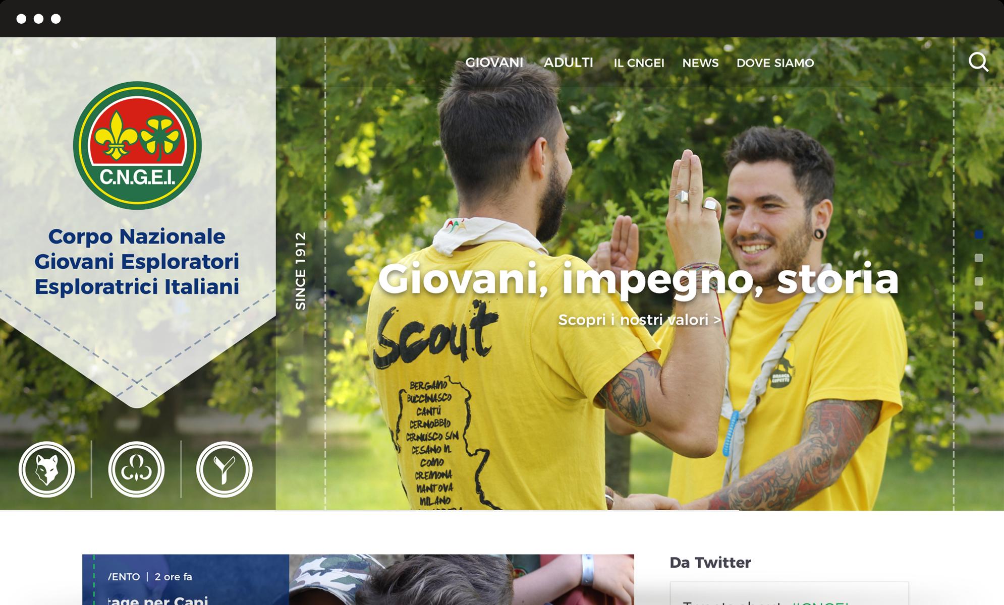 Cover header website CNGEI project