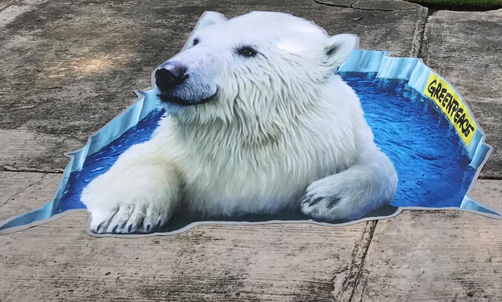 Save the Arctic 3D carpet