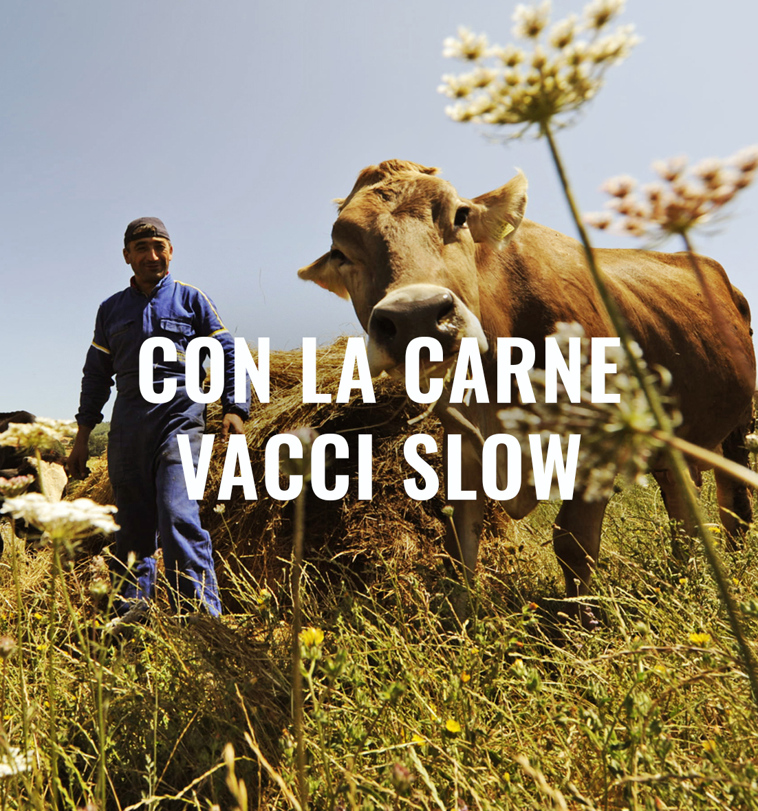 slowfood meat the change cover
