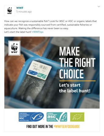 slider1_WWF-Sea food guide
