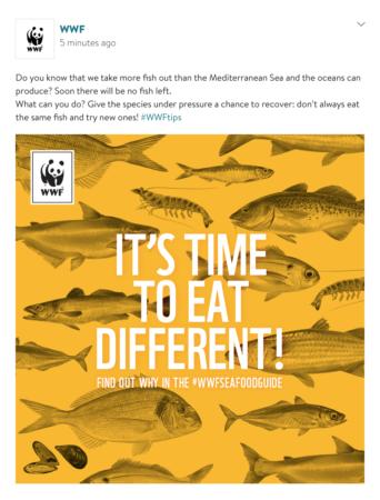 slider2_WWF-Sea food guide