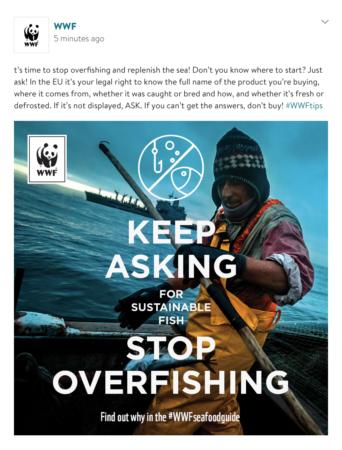 slider3_WWF-Sea food guide